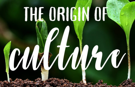 The Origin of Culture: Is your culture reactive or proactive?