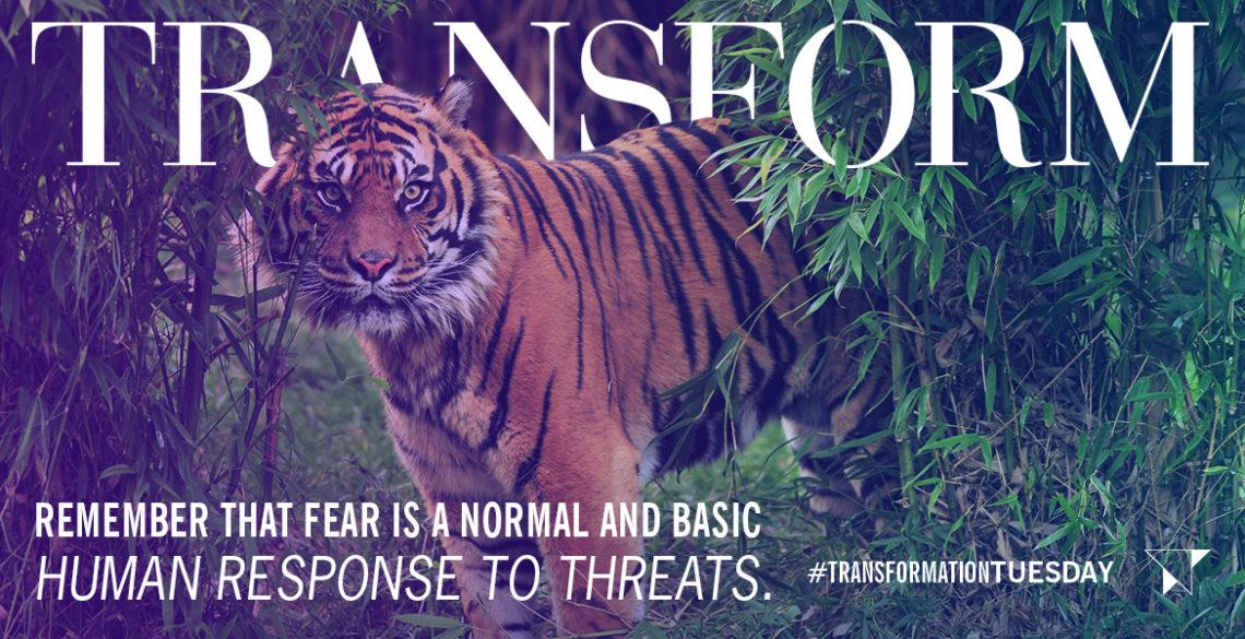 Tips on Fear